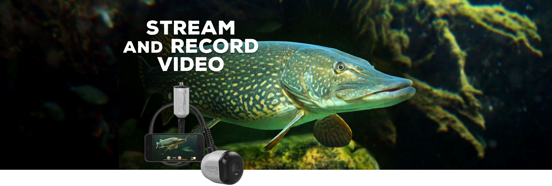 Stream and Record Video